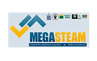 Logo Mega Steam